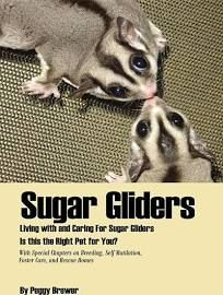 Sugar Gliders: Living with and Caring For Sugar Gliders Is this the Right Pet for You? [Book]