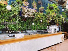 Hoegaarden Greenhouse prepara cardápio especial para o Brunch Weekend Snack Bar, Bodega Bar, Brunch Decor, Table Decorations, Plants, Rooftop, Style, Grande, Marinated Salmon