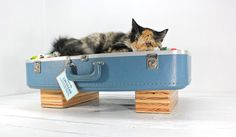 My cats are always jumping in my luggage! Large Upcycled Blue Suitcase Pet Bed Handmade Wood by AtomicAttic, $99.00