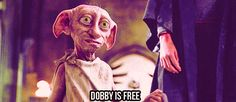 """""""Harry Potter"""" Fans Are Trying To Set Dobby Free By Leaving Their Socks For Him"""