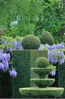 Topiary & Wisteria love this fountain shape - Garden Ideas - DIY Boxwood Garden, Garden Hedges, Topiary Garden, Garden Art, Garden Landscaping, Garden Design, Garden Cottage, Boxwood Topiary, Easy Garden