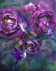 A Rose Named Violette art by Carol Cavalaris.