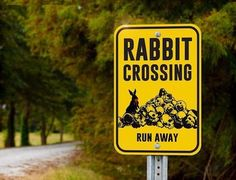 """Aluminum Outdoor Sign, """"Rabbit of Caerbannog"""" Inspired by Monty Python's Holy Grail, Printed as a Quality Road Sign Durable in Any Weather"""