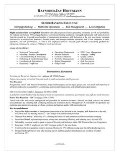 Cio Technology Executive Resume Example  Resume Examples Sample