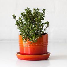 7 best le creuset herb planters images herb planters kitchens cooking tools. Black Bedroom Furniture Sets. Home Design Ideas