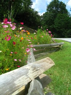 fence with wildflowers