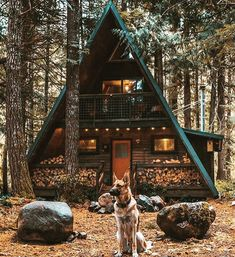 "65 Beğenme, 5 Yorum - Instagram'da Brandon W. Hearn (@brandonwhearn): ""Life goals. A-frame cabin in the woods. #home #house #cabin #woods #aframe #dog #trees #nature…"""