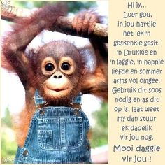 Greetings For The Day, Evening Greetings, Good Morning Greetings, Good Morning Wishes, Good Morning Quotes, Lekker Dag, Baby Boy Knitting Patterns, Afrikaanse Quotes, Goeie More