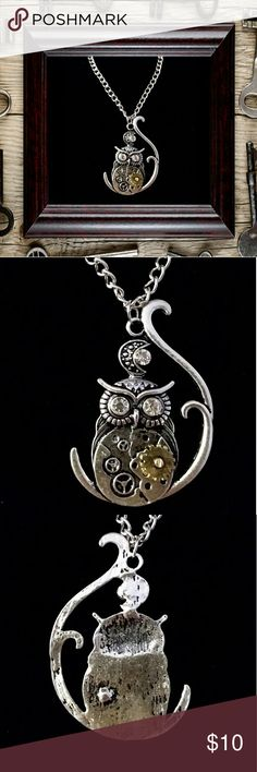 "Steam punk owl necklace Steam punk owl necklace. Rhinestone eyes.  22"" chain with 3"" extender. NWOT Jewelry Necklaces"