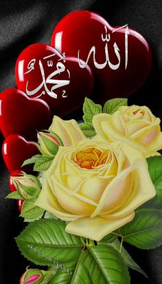 Allâhümme salli alâ seyyidina Muhammedin ve alâ âli seyyidina muhammed s. Mecca Wallpaper, Allah Wallpaper, Islamic Wallpaper, Love Wallpaper, Flowers Gif, Beautiful Rose Flowers, Allah Calligraphy, Islamic Art Calligraphy, Islamic Images