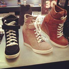 Steve Madden sneaker wedges