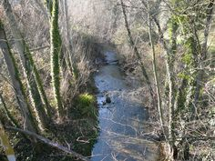Rio Caliente (La Nava)