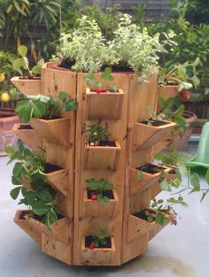 Horta vertical em madeira