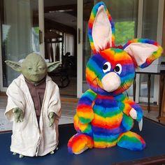 Happy Star Wars Day from Yoda and Rainbow Rabbit!