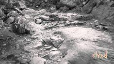"""Vittorio Gassman in : """" Sono una creatura """"  ( Ungaretti )"""