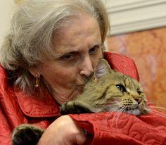 Animals that heal in San Antonio