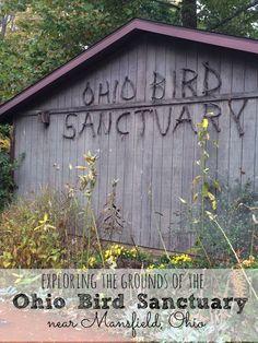 Exploring the grounds of the Ohio Bird Sanctuary near Mansfield Ohio