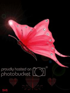 Animated Gif by JoanBlalock Butterfly Gif, Butterfly Kisses, Butterfly Quotes, Butterfly Wallpaper, Beautiful Butterflies, Beautiful Flowers, Foto Gif, Glitter Gif, Images Gif