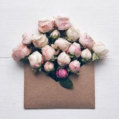 flowers in envelopes