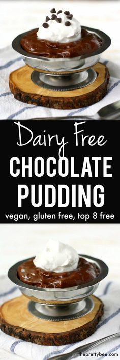 Creamy, delicious, DECADENT dairy free chocolate pudding recipe.