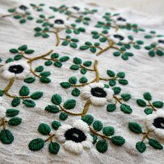 blanco woolflower4.jpg