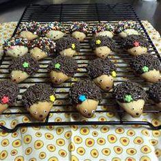 Inspiration - Hedgehog Cookies