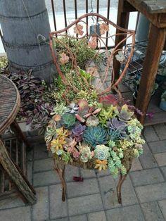 silla vieja metal jardinera plantas