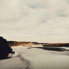 #ShareIG #tagliamento #friuli #fvg #river #igersfvg