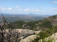Mt. Walsh - Near Biggenden QLD. Australia