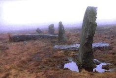 Saith Maen NW (Craig-y-nos) Stone Row County: Powys (Brecknockshire)