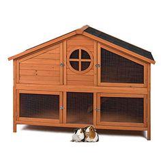 pets at home foxglove guinea pig hutch - Google Search Guinea Pig Hutch, Guinea Pigs, Rabbit Hutches, Large Animals, Animal House, Pet Shop, Garden Design, Home Appliances, Pets