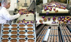 Inside the factory where 1.5m creme eggs are made http://dailym.ai/P7zRxA