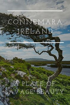 Connemara, Ireland. Known for its savage beauty. Ireland is famed for its pristine beautiful landscape. Green hills nourished from our 'soft Irish weather', ancient ruins telling of tales from a bygone era, the powerful Atlantic carving an already rugged shore line. Below are some of locations that capture this essence, and we feel are some of the best scenic places to visit in Ireland.