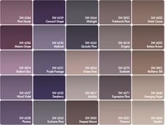 Best Paint Color For Walls With Purple Colors That Can Bring Out