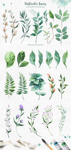 Spring Collection by AlexGreenArt on Plant Illustration, Botanical Illustration, Watercolor Illustration, Watercolor Leaves, Floral Watercolor, Watercolor Paintings, Unique Drawings, Art Drawings Beautiful, Plant Doodles