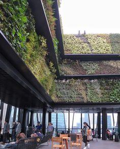 東急プラザ銀座 Tokyu Plaza Ginza / Sukiyabashi Tokyo 屋上のキリコテラスからは銀座の街や丸の内のビル群日比谷公園皇居周辺までを一望できるゆったりできるソファ席まで用意されたこのフリースペースなかなかよい . by urbanscape