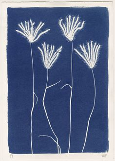 Sri Lankan Grasses Cyanotype by Henrietta Molinaro at Wilson Stephens & Jones http://www.wilsonstephensandjones.com