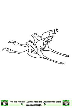 flying flamingos coloring page