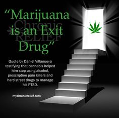 """Marijuana is an Exit Drug."" Quote by Daniel Villanueva testifying that cannabis helped him stop using alcohol, prescription pain killers and hard street drugs."