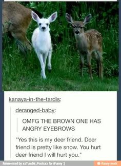 omg the angry looking deer reminds me of me when I protect my friends especially my internet buddies