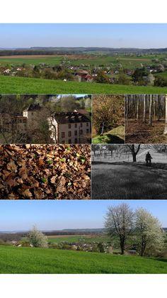 Just a Ballad / Mettlach-Tünsdorf by M. Eye Photography, Vineyard, Eyes, Outdoor, Outdoors, Outdoor Games, Human Eye