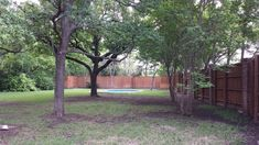 From Barren to Shady Beauty - Roundtree Landscaping - Dallas, TX