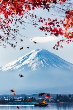 Fuji Japan by Andrew Fan. Fuji Japan by Andrew Fan. Monte Fuji Japon, Places Around The World, Around The Worlds, Beautiful World, Beautiful Places, Amazing Places, Mont Fuji, Art Japonais, Belle Photo