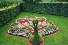 Topiary - impressive and creative. This is a crazy night. Garden Crafts, Garden Projects, Garden Art, Garden Design, Topiary Garden, Garden Planters, Lawn Edging, Front Yard Landscaping, Beautiful Gardens