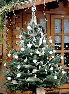 Sapin de Noël Nature