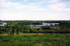 The beautiful 11.2 mile Busse Woods bike trail in Illinois provides scenic views of meadows, forests & lakes.