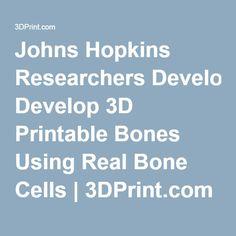 Johns Hopkins Researchers Develop 3D Printable Bones Using Real Bone Cells   3DPrint.com