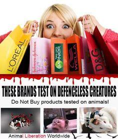 (1) Animal Liberation Worldwide