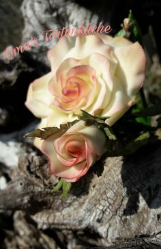 Rose, Flowers, Plants, Pies, Backen, Floral, Roses, Plant, Royal Icing Flowers