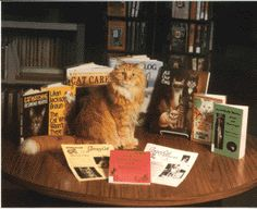 Dewey The Library Cat Google Image Result for http://www.spencerlibrary.com/Images/view3.gif